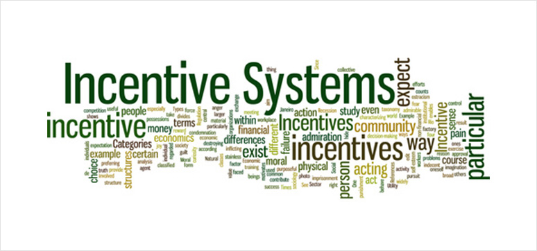incentive-system