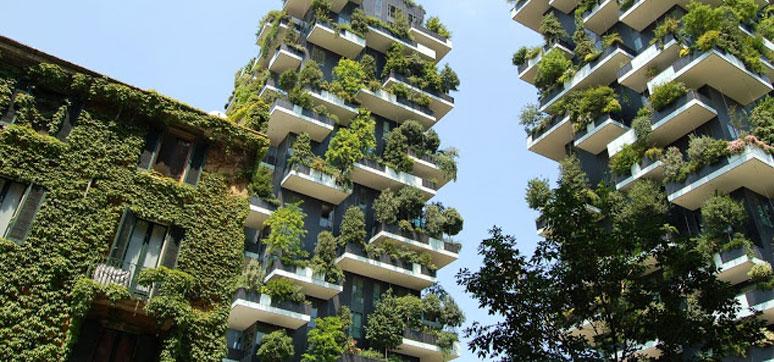 tree-architecture-plant-mansion-building-suburb-137240-pxhere.com