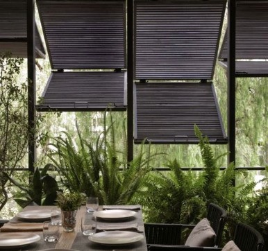 Elegant Window Louvers