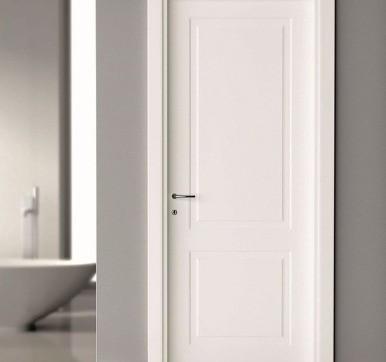 entrance flush door