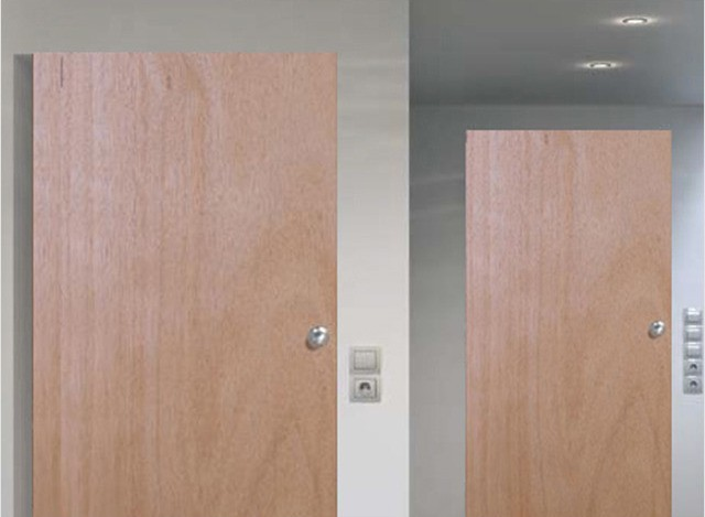Flush Door by Holy Wood Enterprises